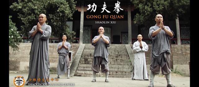 Shaolin Gong Fu Quan Video